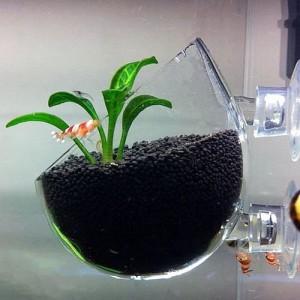 Nano Aquarium Deko